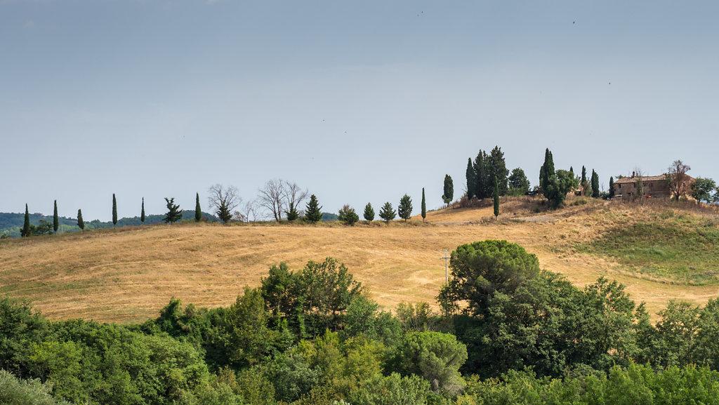 Toscana-816.jpg