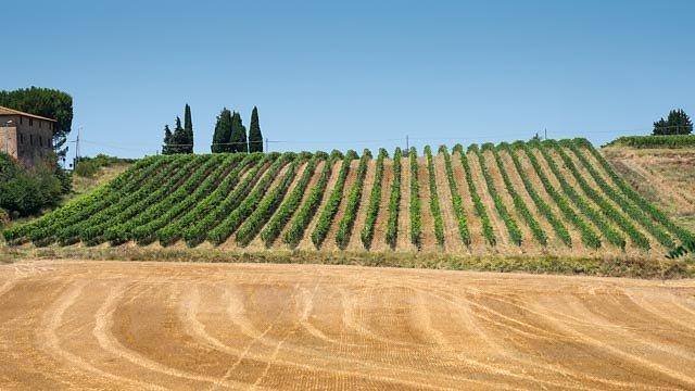 Toscana-844.jpg